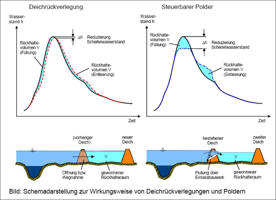 Schemadarstellung der Wirkungsweise von Deichrückverlegungen und Poldern